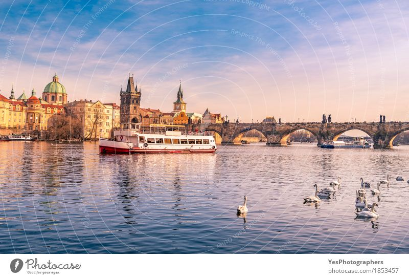 Prague cityscape with Vltava and Charles Bridge Nature Vacation & Travel Blue City Joy Architecture Yellow Building Bird Tourism Watercraft Trip Gold Europe