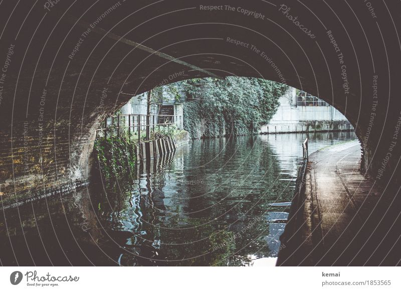 At the canal Water Foliage plant River Channel Town Downtown Bridge Tunnel Facade Handrail Authentic Dark Glittering Loneliness Surface of water Waterway Curve