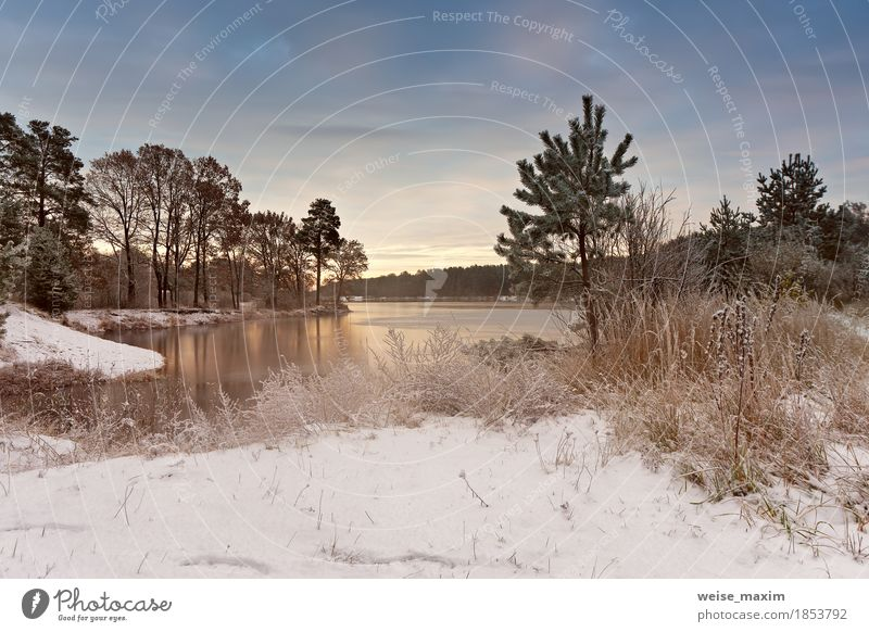 Cold snowy morning on the lake. Late autumn Sky Nature Vacation & Travel Plant White Tree Landscape Clouds Winter Forest Environment Yellow Autumn Natural Grass Snow