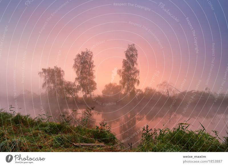 Autumn foggy morning. Colorful dawn on the misty calm river Sky Nature Vacation & Travel Blue Green Tree Landscape Red Environment Natural Grass Freedom Lake