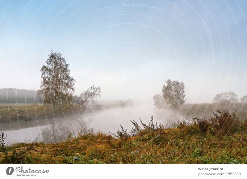 Autumn foggy morning. Dawn on the misty tranquil river Sky Nature Vacation & Travel Blue Green Tree Landscape Yellow Meadow Natural Lake Tourism Bright Park Fog