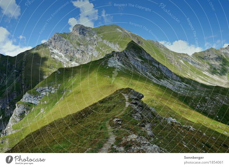 Light and shadow Nature Landscape Sky Summer Beautiful weather Grass Rock Alps Mountain Peak Green Calm Moody Lanes & trails Hiking Mountain hiking Colour photo