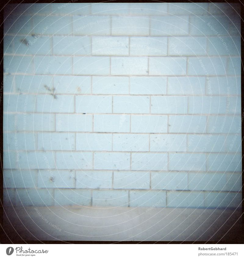 Old Calm Loneliness Cold Wall (building) Wall (barrier) Dirty Concrete Ground Simple Swimming pool Bathroom Middle Brick Tile Room