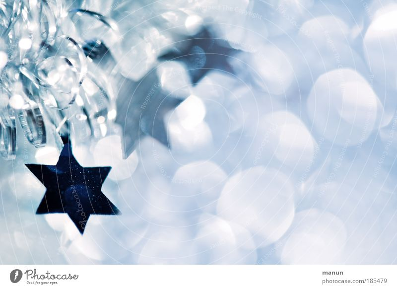 Christmas decoration Christmas & Advent White Blue Winter Light Cold Ornament Joy Religion and faith Feasts & Celebrations Glittering Copy Space Fresh Star (Symbol) Happiness
