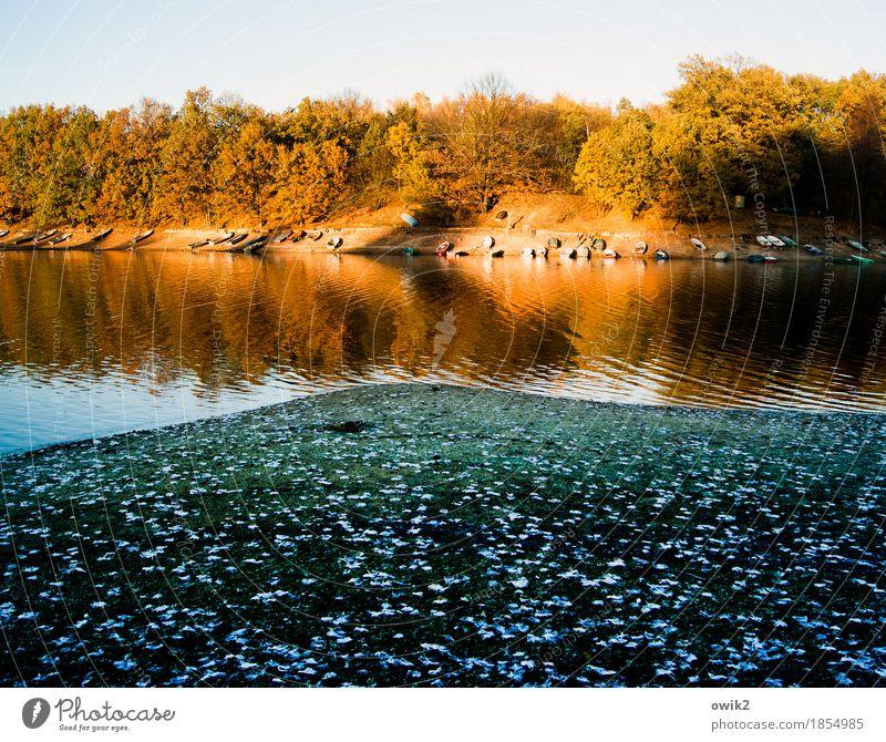 parking bay Environment Nature Landscape Plant Water Cloudless sky Horizon Autumn Climate Beautiful weather Tree Leaf Deciduous tree Autumnal colours Lakeside