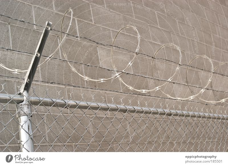 Razor Wire Fence Gray Safety Dangerous Protection Strong Steel Barrier Penitentiary System Enclosure Sharp-edged Danger of Life Enclose