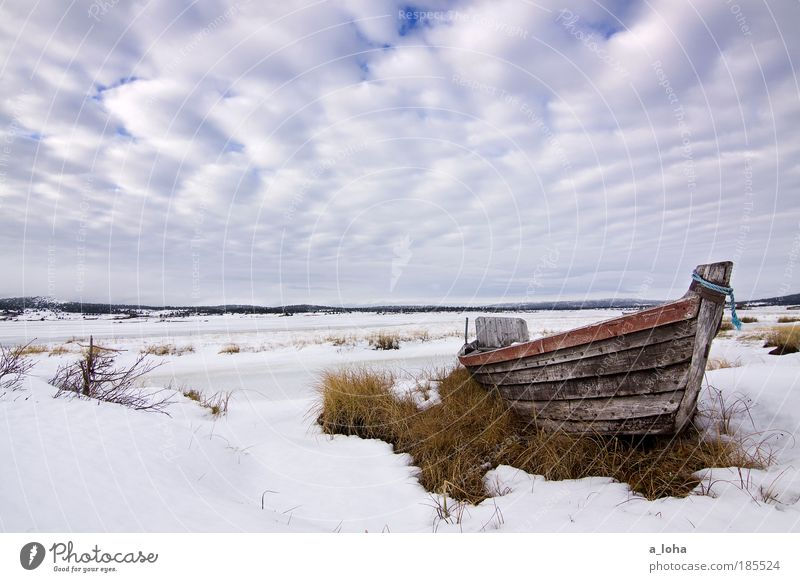Nature Sky Winter Clouds Loneliness Far-off places Cold Snow Watercraft Wood Lake Landscape Ice Line Wet