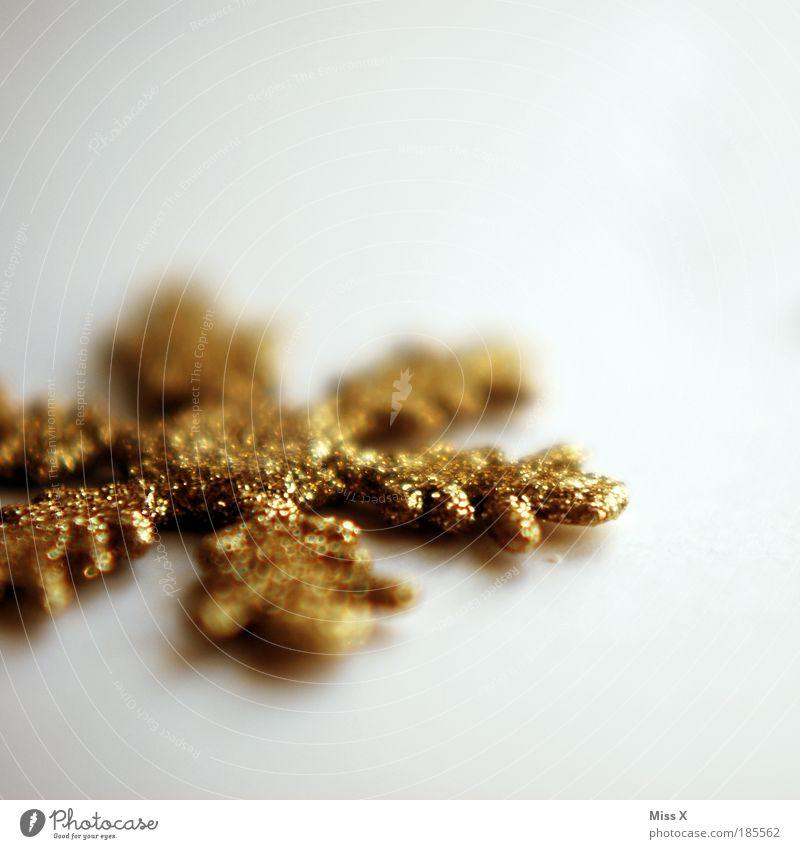 Weihnachtsschneeflöckle Christmas & Advent Beautiful Feasts & Celebrations Stars Glittering Detail Gold Snow Star (Symbol) Esthetic Jewellery Decoration