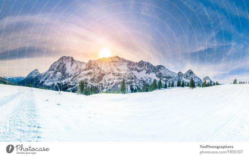 Winter sunshine over snowy mountains Nature Vacation & Travel Blue White Tree Landscape Joy Forest Mountain Cold Snow Freedom Tourism Copy Space Weather