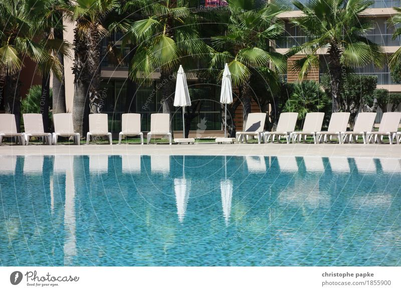 POOL COUNTRY Vacation & Travel Tourism Summer Summer vacation Sun Sunbathing Swimming pool Sunshade Deckchair Package tour Hotel Hotel pool Colour photo