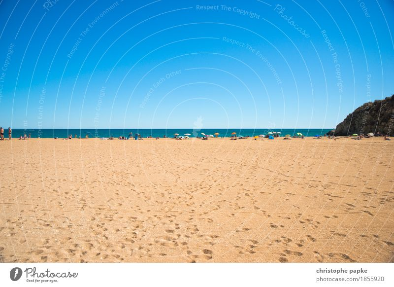 Human being Sky Vacation & Travel Summer Sun Ocean Relaxation Beach Coast Tourism Contentment Beautiful weather Well-being Cloudless sky Summer vacation Sunbathing