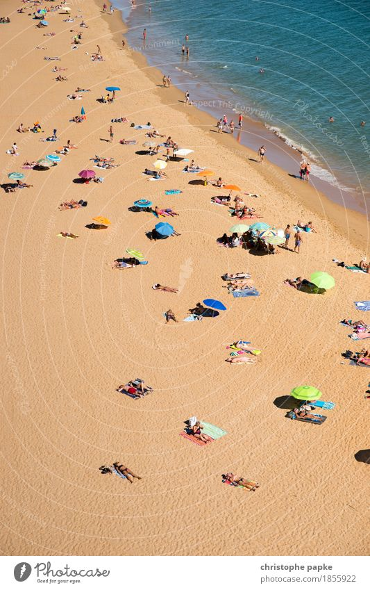 Bird's eye view of people on the beach Beach Ocean Tourism Vacation & Travel Summer vacation Package tour Sunbathing Relaxation Swimming & Bathing Human being