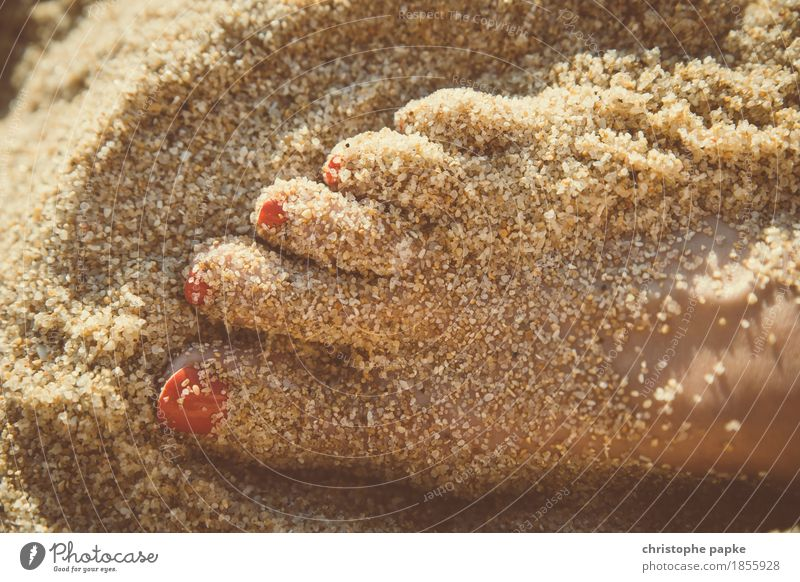 Vacation & Travel Youth (Young adults) Summer Young woman Sun Ocean Relaxation Beach Feminine Feet Sand Tourism Contentment Beautiful weather Summer vacation