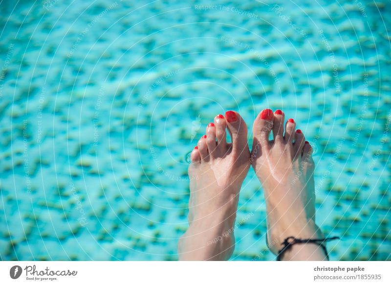Appeared Well-being Contentment Relaxation Swimming pool Swimming & Bathing Vacation & Travel Tourism Summer Summer vacation Feminine Woman Adults Feet Hot