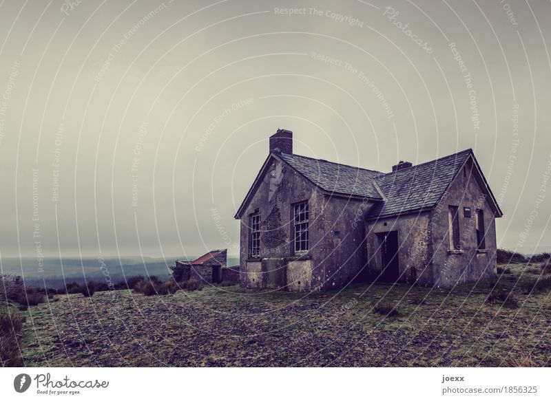 Sky Old House (Residential Structure) Gray Decline Ruin Ireland Bad weather Hideous