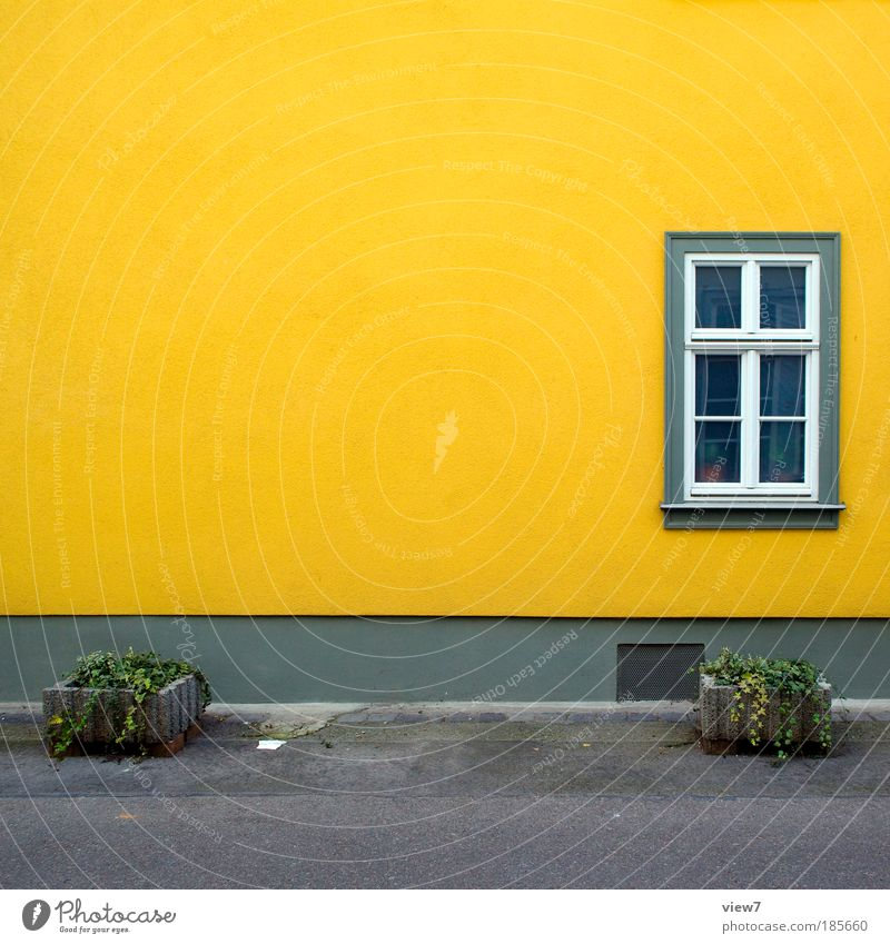 Beautiful Plant House (Residential Structure) Yellow Far-off places Street Colour Relaxation Autumn Wall (building) Window Freedom Wall (barrier) Lanes & trails