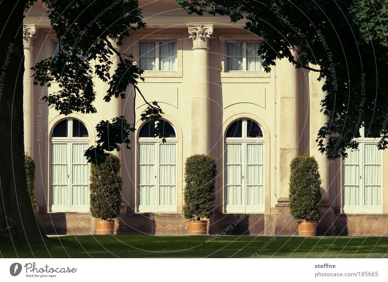 Villa Kunterbunt Tree Garden Park Meadow Dream house Architecture Castle Country house Luxury Calm Colour photo Exterior shot Deserted Day Shadow Contrast