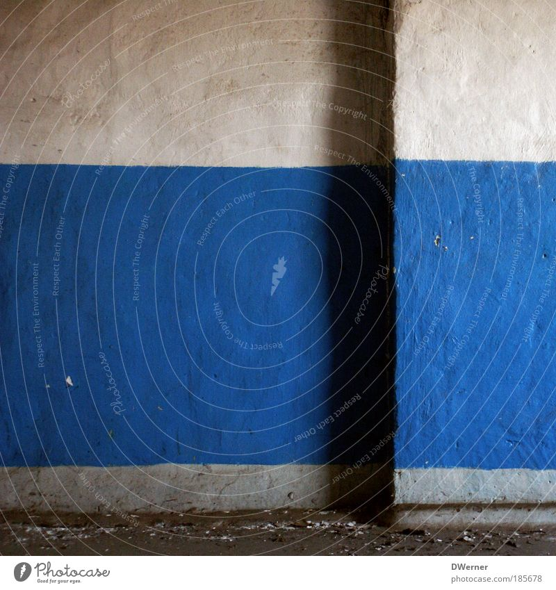 Blue-white blue-white 2 Style Living or residing Flat (apartment) House (Residential Structure) Redecorate Construction site Art Painting and drawing (object)