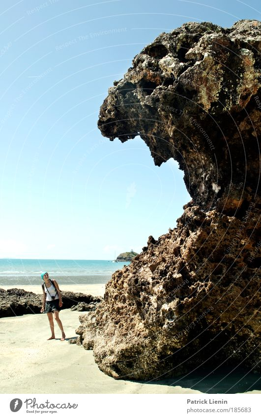 muttonhead Woman Adults 1 Human being Nature Landscape Cloudless sky Rock Ocean Creepy Coast Australia Queensland Fear To feed Set of teeth Large Sand