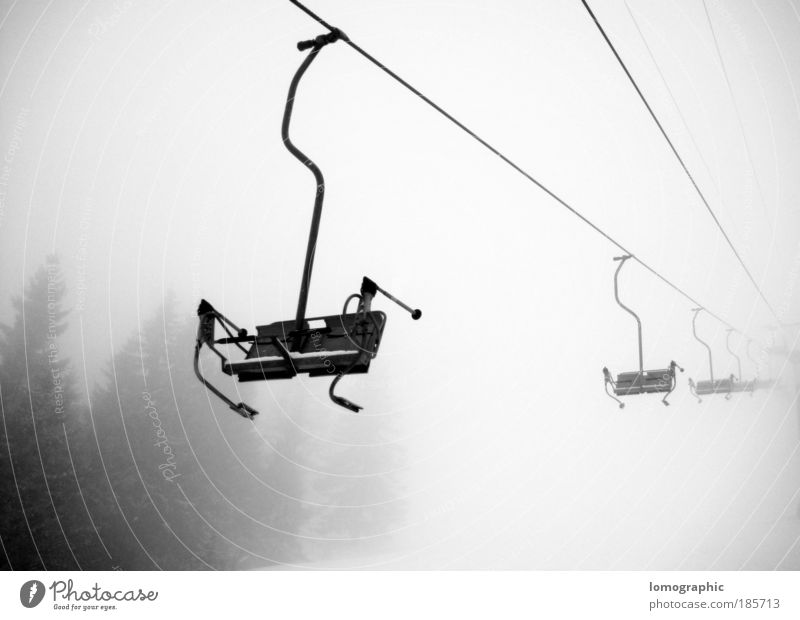 descent Skis Ski run Chair lift Nature Winter Fog Snow Snowfall Alps Mountain Cable car Ski lift Freedom Black & white photo Exterior shot Deserted Contrast