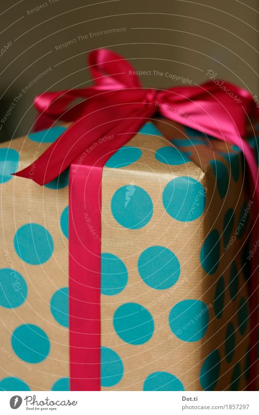 Blue Christmas & Advent Beautiful Joy Feasts & Celebrations Pink Birthday Gift Paper Curiosity Point Desire Surprise Turquoise Sharp-edged Expectation