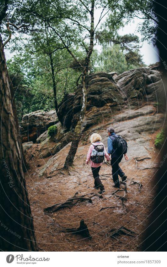 Senior Couple hiking trough forest on Holiday Vacation & Travel Relaxation Joy Forest Mountain Senior citizen Autumn Lifestyle Sports Health care Couple Rock Tourism Hiking Action To enjoy