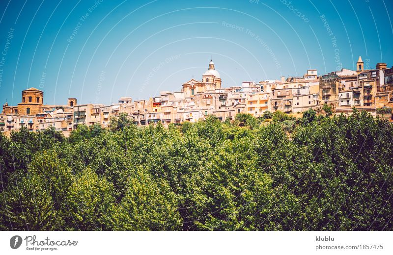Panoramic view in Piazza Armerina, Sicily, Italy Vacation & Travel Old Plant Town Tree Landscape House (Residential Structure) Street Architecture