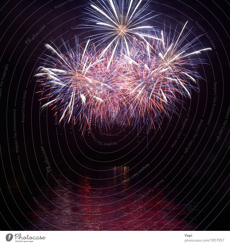 Colorful holiday fireworks with water reflection Joy Waves Night life Entertainment Party Event Feasts & Celebrations Christmas & Advent New Year's Eve Sky