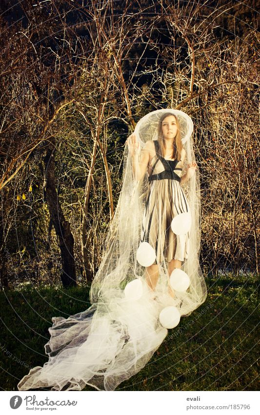 Woman Human being Youth (Young adults) White Tree Feminine Style Grass Garden Fashion Adults Elegant Gold Safety Balloon
