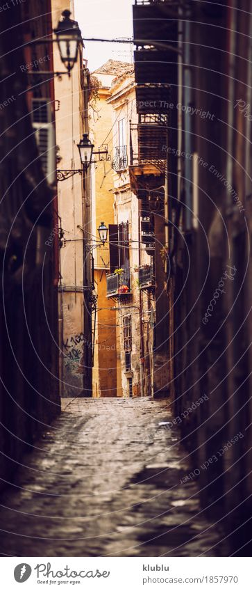 City view detail of Palermo city, Sicily, Italy Style Vacation & Travel House (Residential Structure) Art Culture Places Building Architecture Facade Street Old