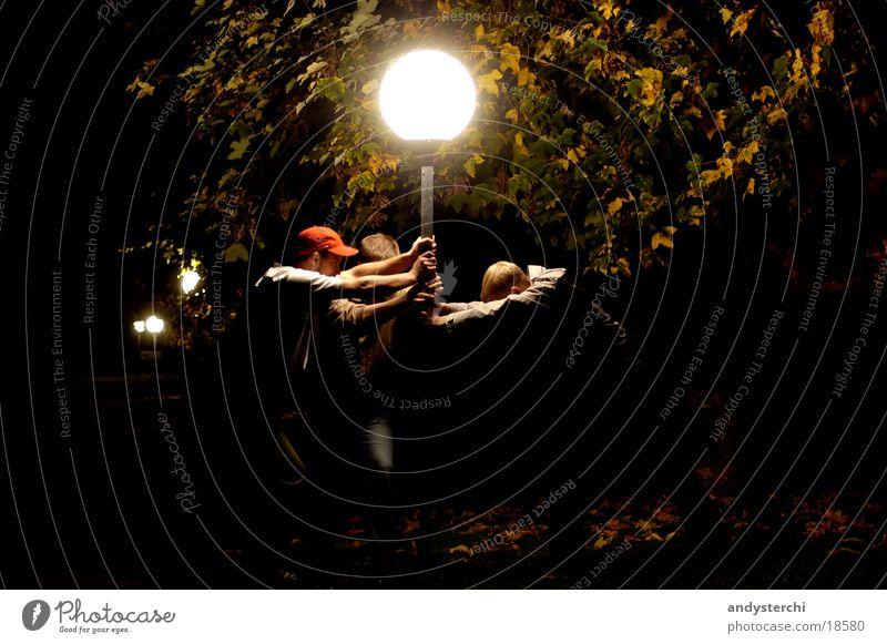 Human being Man Tree Dark Bright To hold on Illuminate Flashy