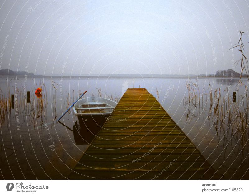A day at the lake Environment Nature Landscape Water Autumn Bad weather Lakeside Fishing boat Rowboat Gray Calm Jetty Mecklenburg-Western Pomerania
