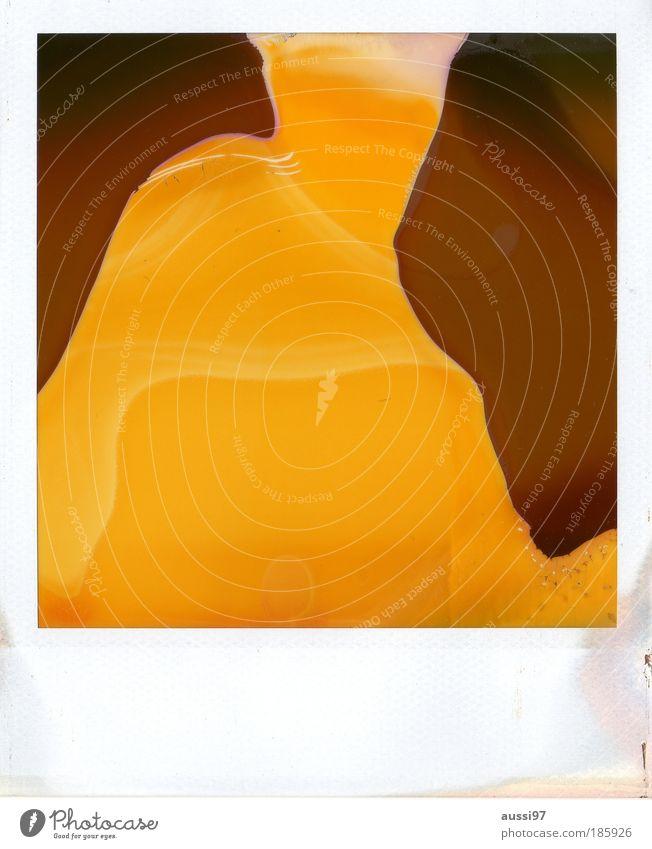 Happy birthday, Photocase! Polaroid Abstract Melt Expired Art instant film Brown Yellow