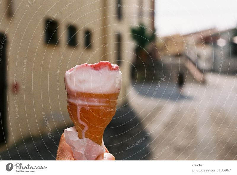 Happy birthday, photographers! Ice cream Candy Well-being Summer Summer vacation Sun Delicious Colour photo Exterior shot Shallow depth of field Day