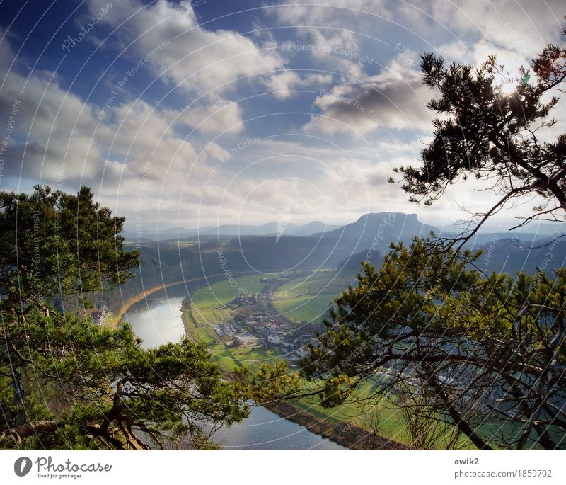watch TV Environment Nature Landscape Plant Sky Clouds Horizon Spring Climate Beautiful weather Grass Wild plant Pine River bank Elbe Nature reserve
