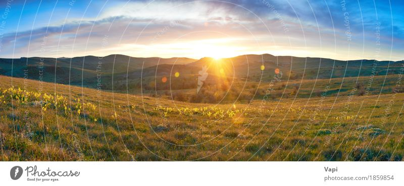 Panorama- field with flowers and dramatic sky Vacation & Travel Summer Summer vacation Sun Mountain Wallpaper Environment Nature Landscape Plant Sky Clouds