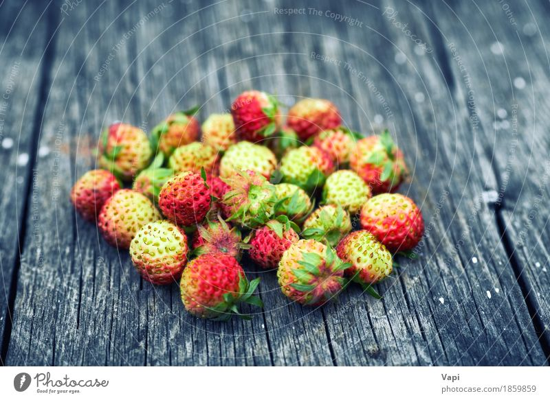 Bunch of red wild strawberry Nature Old Colour Green Red Leaf Yellow Natural Wood Food Gray Group Fruit Wild Nutrition Fresh
