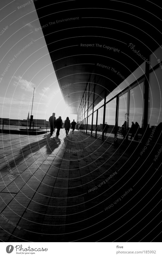 Tillykke with fodselsdagen photocase Human being Sky Clouds Town Port City Terrace Window Roof Going Bright Denmark Copenhagen Black & white photo Exterior shot