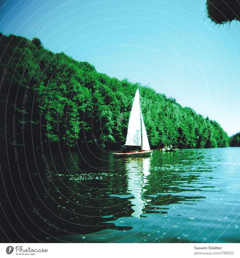 Water Sky Summer Forest Lake Waves Saxony Silhouette Trip Driving Island River Leisure and hobbies Analog Discover Sailing