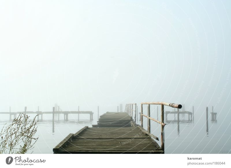 Sky Old Water Loneliness Landscape Autumn Wood Gray Coast Sadness Fog Island Bridge Broken Gloomy Grief