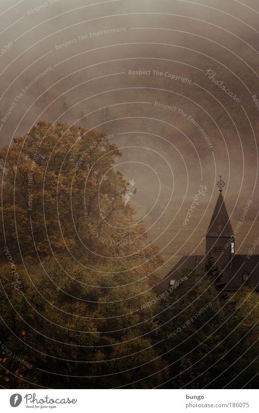 caligo Nature Landscape Drops of water Autumn Fog Tree Bushes Church Dark Fantastic Historic Gloomy Brown Hope Belief Dream Longing Esthetic