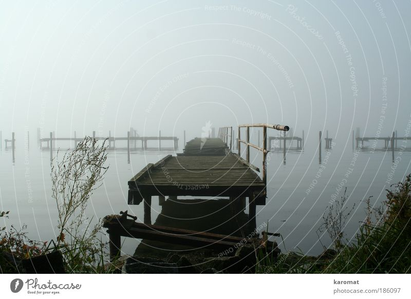 Old Loneliness Landscape Autumn Wood Gray Coast Fog Island Bridge Broken Gloomy Grief Derelict Handrail Baltic Sea
