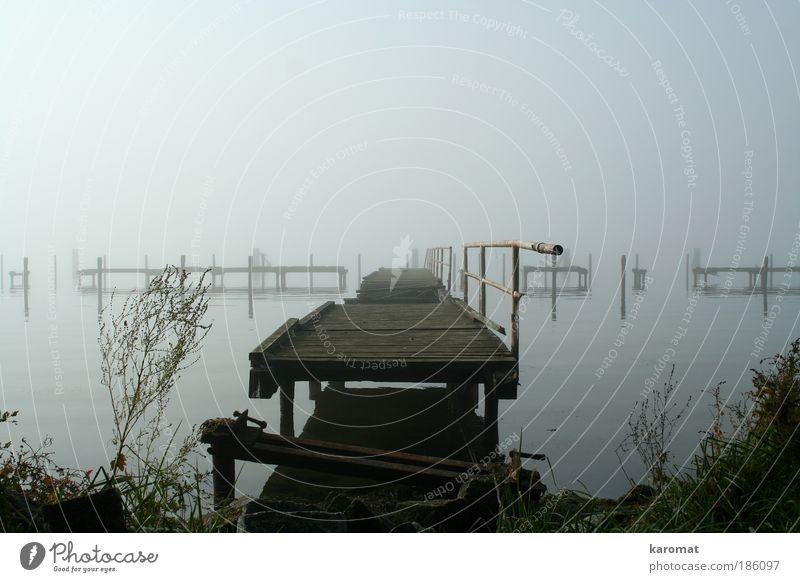 Old Loneliness Landscape Autumn Wood Gray Coast Fog Island Bridge Broken Gloomy Grief Derelict Handrail Baltic Sea