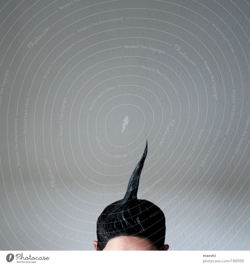 unicorn Beautiful Hair and hairstyles Human being Masculine Feminine Woman Adults Man Head 1 Black-haired Emotions Point tint Forehead Gel Structures and shapes