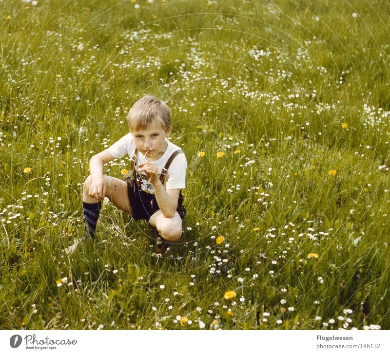 Human being Vacation & Travel Plant Flower Meadow Playing Boy (child) Grass Park Child Leisure and hobbies Sit Tourism Observe Stockings Education
