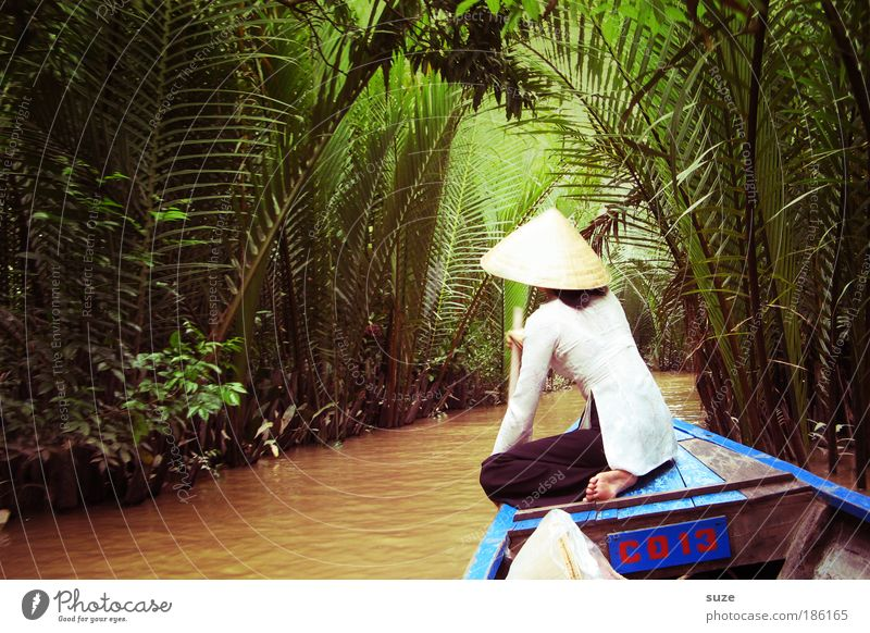 Mekong Delta Vietnam Vietnamese Human being 1 Palm tree Water River Hat Tourism Trip Watercraft Channel Landscape Nature Environment Vacation & Travel