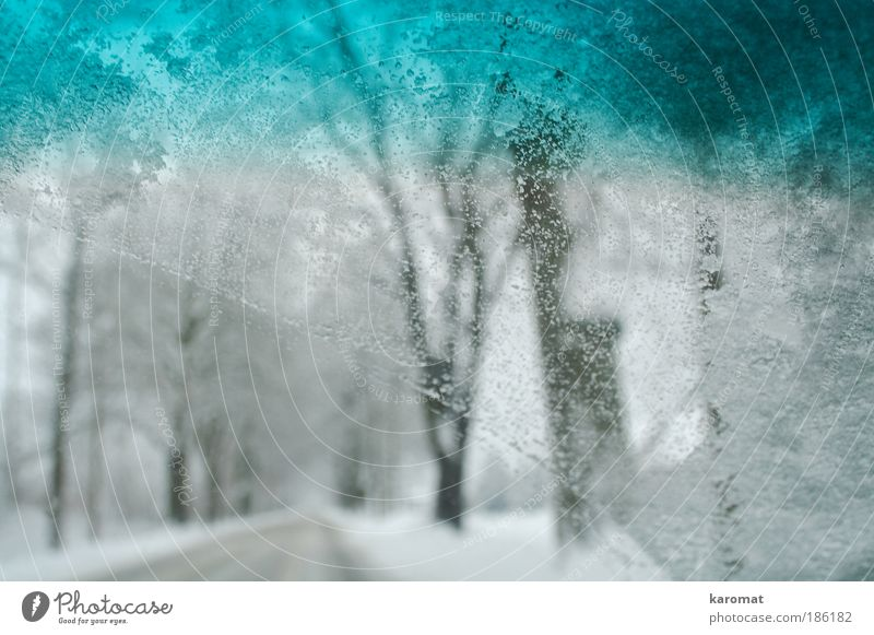 Tree Winter Street Cold Snow Landscape Car Bright Ice Glass Driving Frost Drop Idyll Freeze Motoring