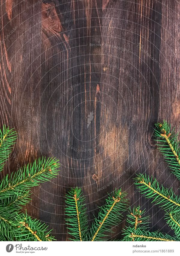 branch of green fir tree on wooden board background Decoration Desk Table Feasts & Celebrations Christmas & Advent Nature Tree Wood New Brown Green Surprise