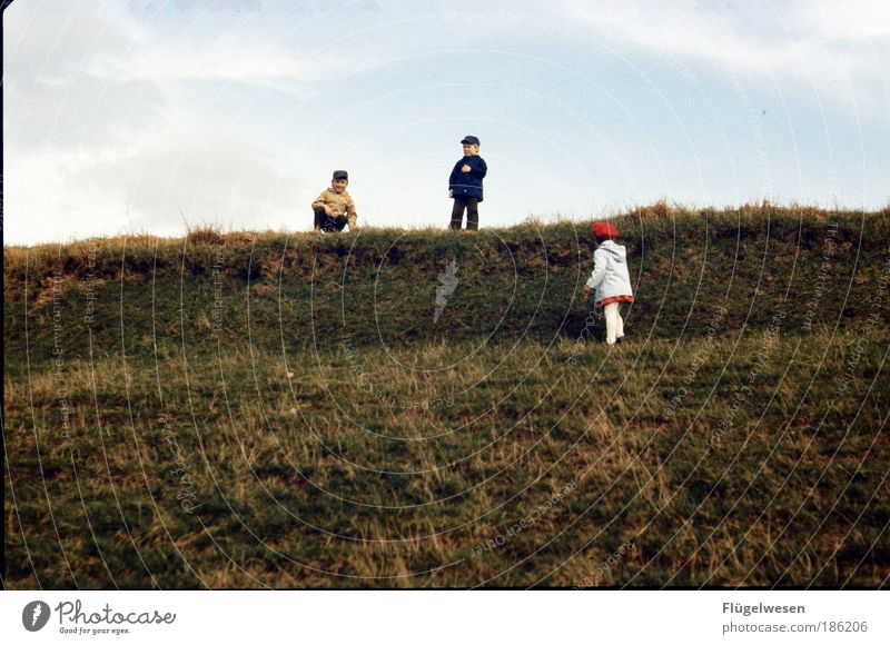 Human being Child Water Girl Ocean Joy Meadow Playing Boy (child) Grass Happy Infancy Leisure and hobbies Walking Lifestyle Beach dune