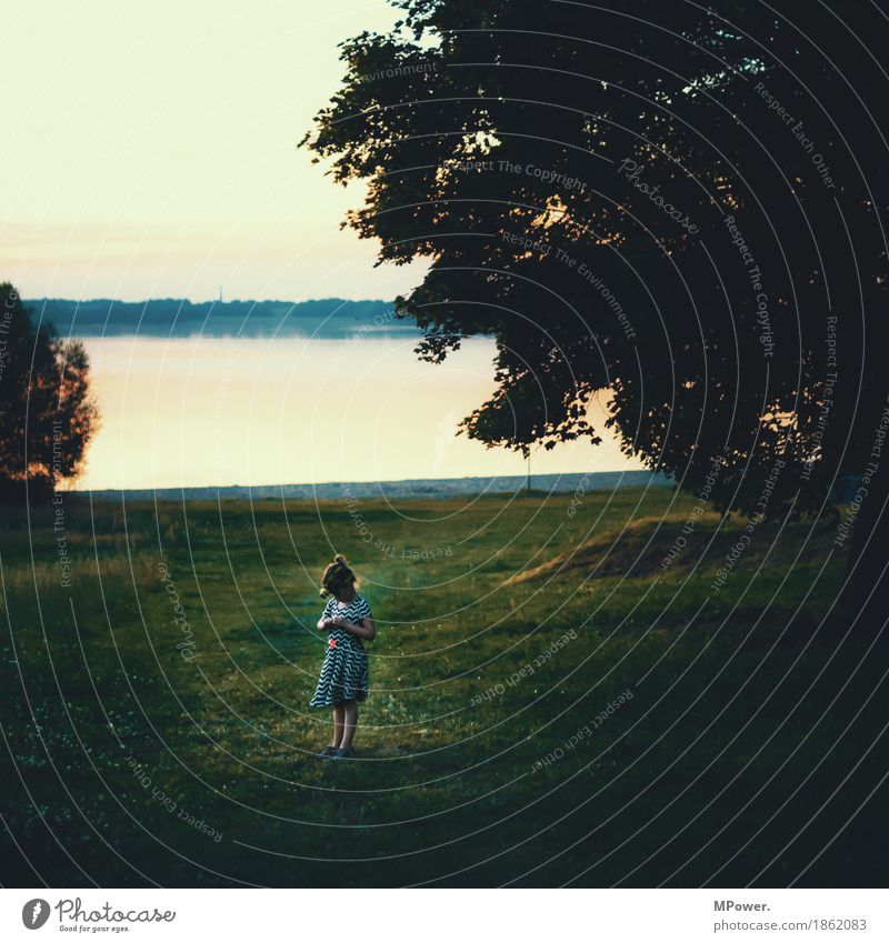 At the lake Human being Child Girl Body 1 Nature Landscape Water Sky Horizon Sunrise Sunset Sunlight Spring Summer Beautiful weather Park Meadow Lake Authentic
